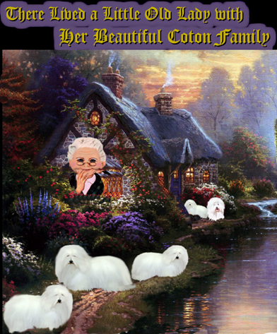 http://www.windcrestcottagecoton.com/wp-content/uploads/2017/04/little_old_lady_with_cotons.jpg